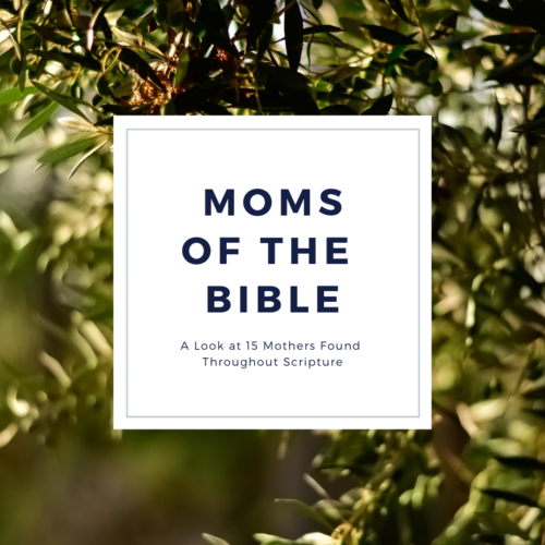 Moms of the Bible // A Look at 15 Mothers Found Throughout Scripture